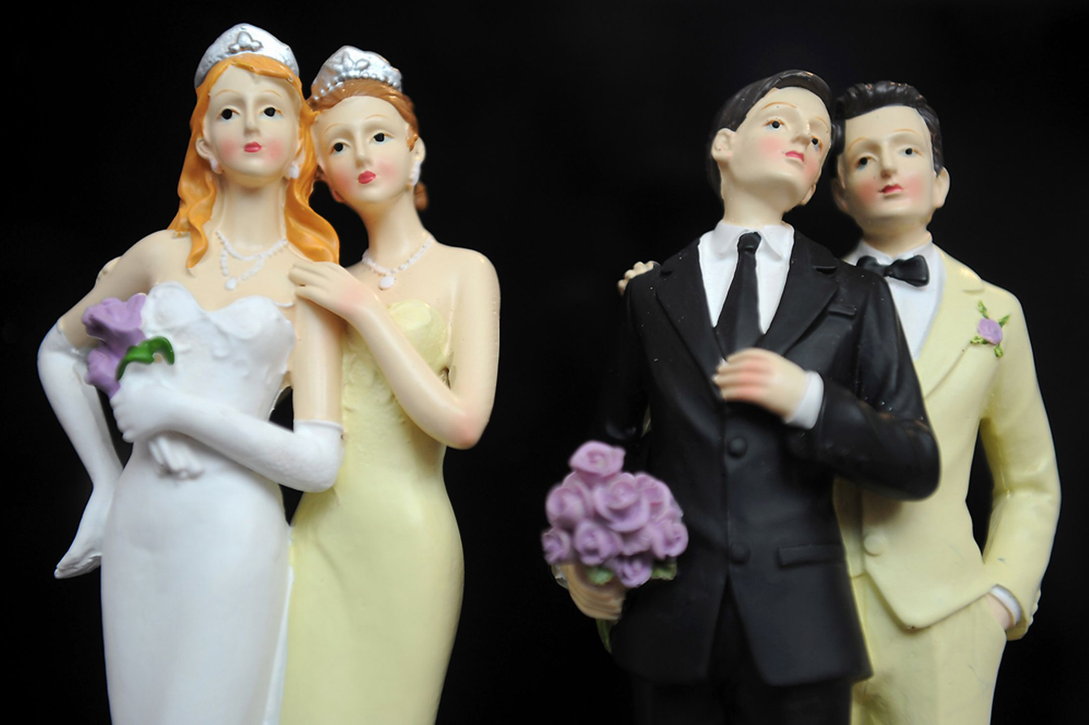 A discussion on the marriages of homosexuals