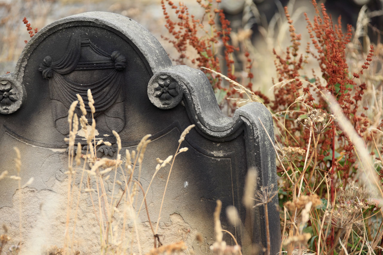 neglected-tombstone-871282318363ZJWj